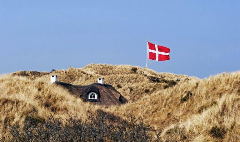 Urlaub mit Hund: Diese Gründe sprechen für eine Reise nach Dänemark